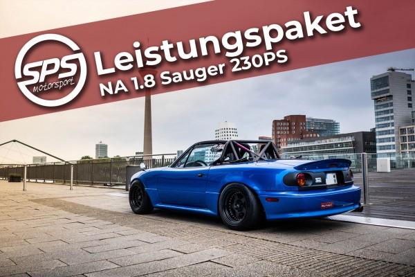 Leistungspaket NA 1.8 Sauger 230PS