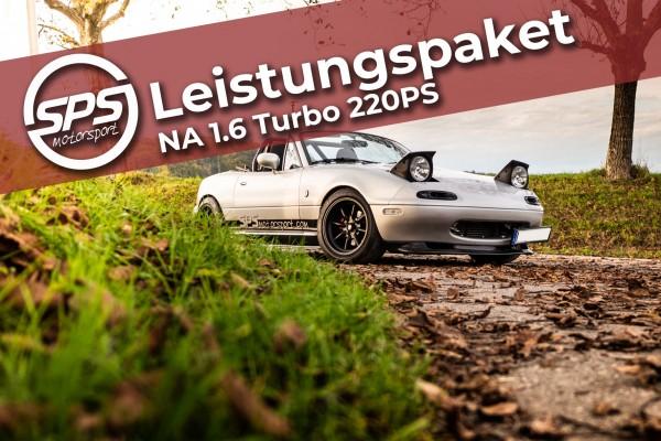 Leistungspaket NA 1.6 Turbo 220PS
