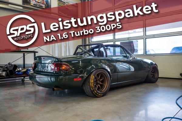 Leistungspaket NA 1.6 Turbo 300PS